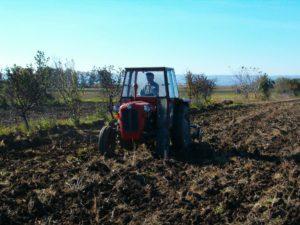 Poljoprivredno zemljiste, oranje (3)